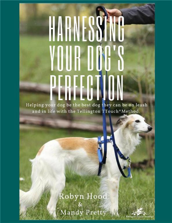 Robyn Hood/Mandy Pretty: Harnessing Your Dog's Perfection (NUR AUF ENGLISCH)